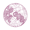 deep purple new moon icon
