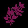 deep purple leafy branch